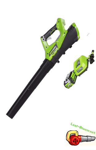 Best Cordless Leaf Blower 2020.Greenworks Cordless Leaf Blower 5 Product Reviews 2019 2020