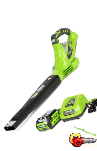 Greenworks Variable Speed Cordless Blower, Battery Included 24252