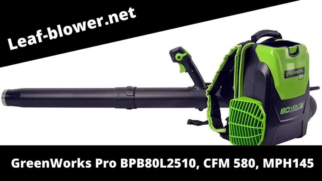 Greenworks Cordless Backpack Leaf Blower